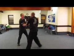 Otro gran vídeo de entrenamiento entre familias de Wing Chun