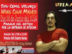 Seminario sifu Cemil en Madrid (y Tenerife)