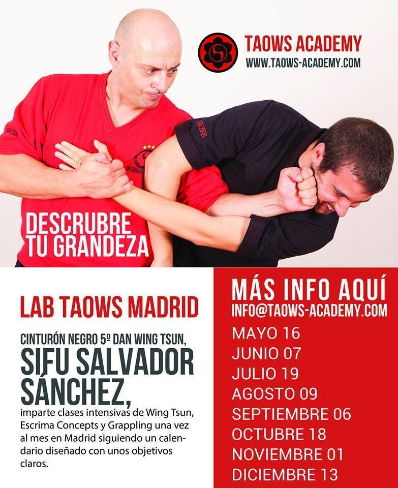 Fechas del TAOWS Lab Madrid