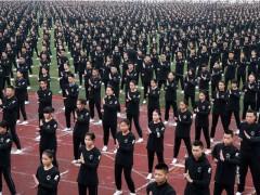 Vídeo del Guinness de gente reunida haciendo Wing Chun