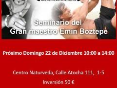 Seminario en Madrid Sifu Emin Domingo 22 de Diciembre