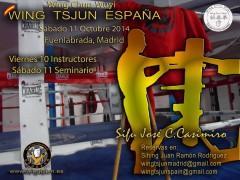 Curso Wing Tsjun en Madrid en Octubre