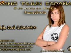 Curso de Wing Tsjun en Madrid: 8 de Junio