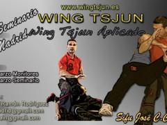 Seminario Wing Tsjun aplicado.