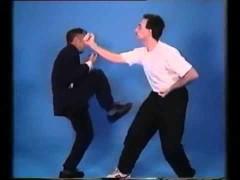 Dos vídeos de Ip Chun
