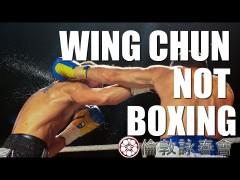 Buenos puntos de diferencias entre boxeo y Wing Chun
