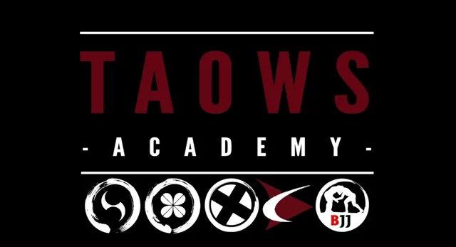 Trailer de TAOWS