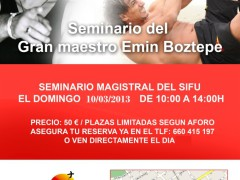 Curso Dai Sifu Emin Boztepe en Madrid. Marzo