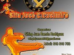 Seminario Wing Tsjun en Madrid: Sifu Jose C. Casimiro