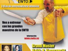 """Curso en Cartagena """"Maestros de Wing Tsun"""" (EWTO) con sifu Kernspecht"""