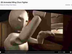 Animación de Wing Chun