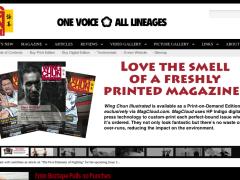 Wing Chun Illustrated: gran revista de Wing Chun