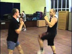 Sifu Alan Orr dando clase: entrenando en varias distancias