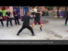 Vídeo de Álvaro, instructor de Escrima Concepts en Madrid, con Wayne Tappin