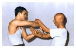 Authentic Wing Tsun de Leung Ting