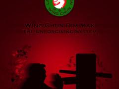 Aplicación Wing Chun Dim Mak